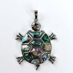 Natural Abalone Paua Shell Pendants Tortoise Dangle Charms Jewelry Making DIY Supplies
